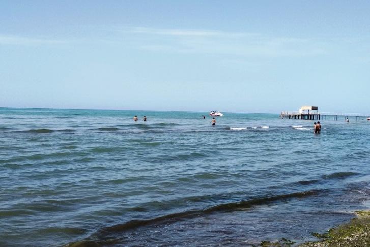 Balıqçının boğulan oğlu, dənizdə çimən it, adam bıçaqlayan oğlan... – Çimərlikdən Reportaj