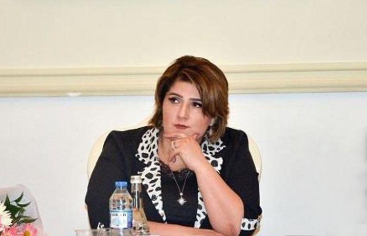 Kamal Abdulla, Pərviz Cəbrayıl, Aqşin Yenisey... - Nərgiz Cabbarlı yeni romanları tənqid edir